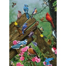 Puzzle 35 pieces - Birds of the Forest