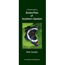 Butterflies of Southern Quebec