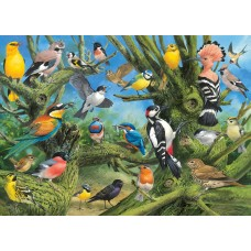 Puzzle 1000 pieces - Garden Birds