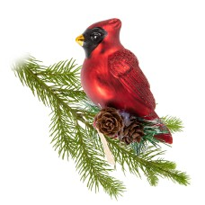Cardinal sur branche avec clip