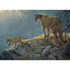 Casse-tête 350 morceaux - Cougars