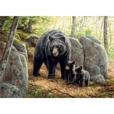 Casse-tête 1000 morceaux - Ours