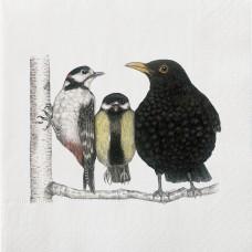 Napkin avec oiseaux (ensemble de 20)