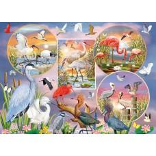 Casse-tête 1000 morceaux - Oiseaux aquatiques