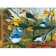 Casse-tête 1000 morceaux - Oiseaux de mangeoires