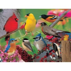 Puzzle 500 pieces - Birds