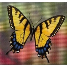 Magnetized Screen Saver - Tiger Swallowtail
