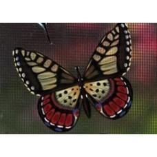Protège-moustiquaire aimanté - Papillon brun et jaune