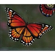 Magnetized Screen Saver - Monarch