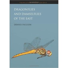 Dragonflies and Damselflies of the East Paperback – Illustrated