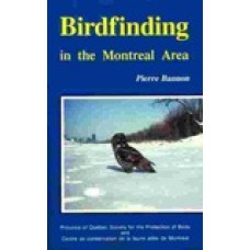 Birdfinding in the Montreal Area