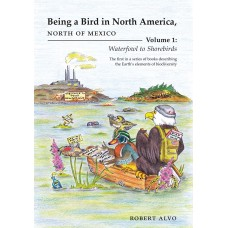 Being a Bird in North America