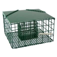 Grande cage à suif - Suet Palace