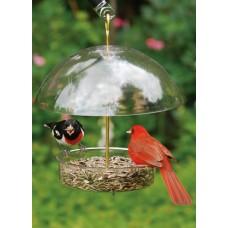 Mangeoires pour petites esp ces d 39 oiseaux et mangeoires for Fenetre a cardinal