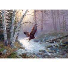 Casse-tête 1000 morceaux - Pygargue et ruisseau forestier