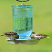 Abreuvoir  pour oiseaux 950 ml Pot Mason