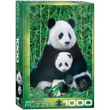 Casse-tête 1000 morceaux - Pandas