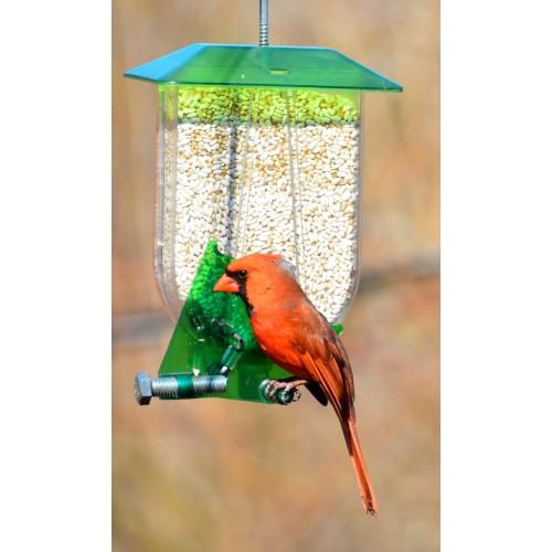 Unique mangeoire cardinal unique cardinal feeder for Fenetre a cardinal
