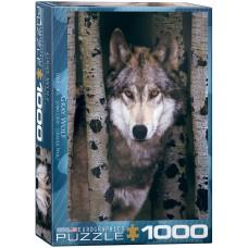 Casse-tête 1000 morceaux - Loup gris (Eurographics)